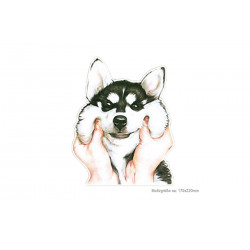 Print Patch POOR DOG, Großes Bügelbild zum aufbügeln